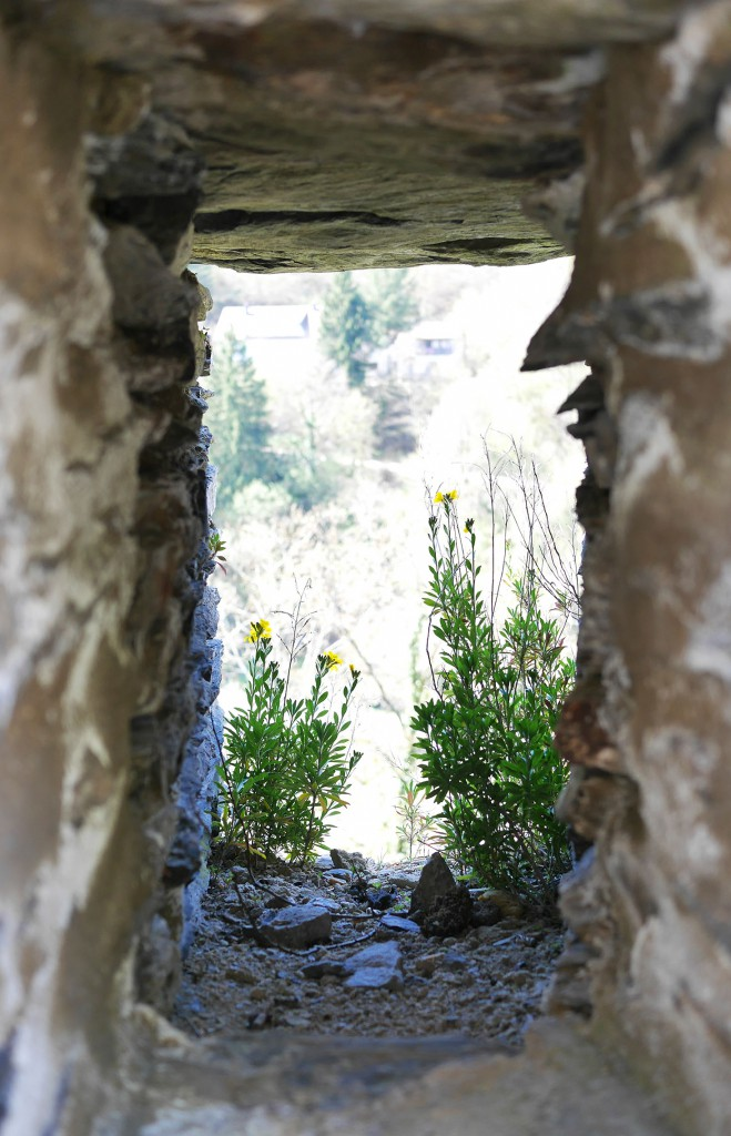 chateau_vianden