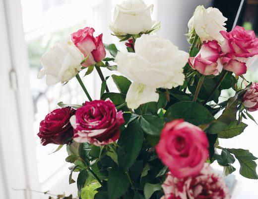 roses_paris_apartment